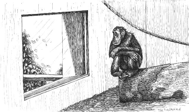 Cunanan2019 chimp